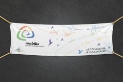 A mobilis általános molinója