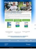 Salonpas (fajdalomcsokkentes.hu) weboldal normál felbontásban