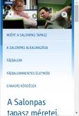Salonpas (fajdalomcsokkentes.hu) weboldal mobil nézet