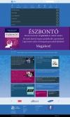 Manta Marketing (http://www.mantamarketing.hu) -szolgáltatások oldala